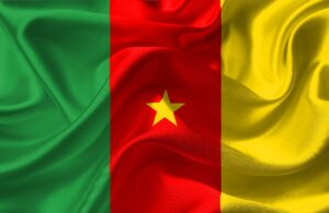 Le drapeau du Cameroun au vent